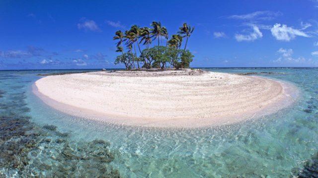 Mikronezya kargo