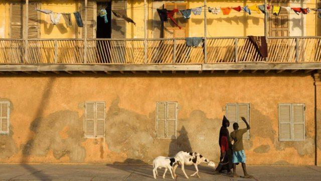 Senegal kargo