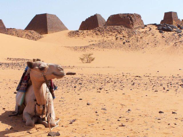 Sudan Kargo