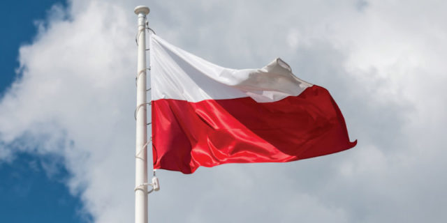 Polonya ihracat