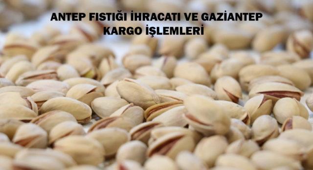 Antep-fistigi-ihracati-ve-gaziantep-kargo-islemleri